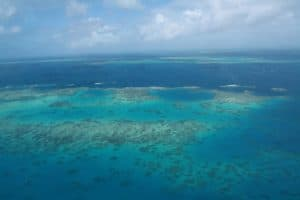 An image of the reef off Cairns