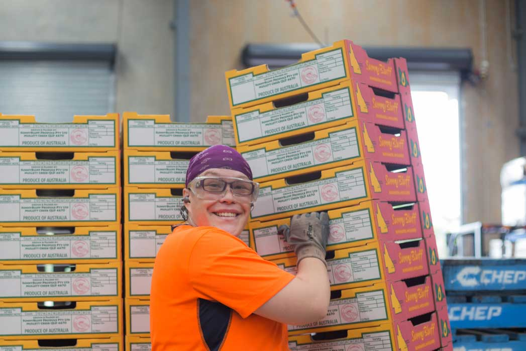 Pamela lifts cardboard fruit boxes in the factory she works at
