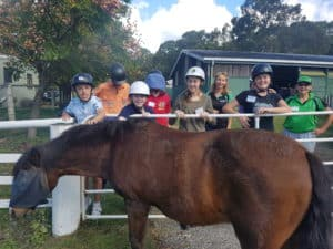 Arundel community grant students petting a horse