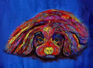 Painting of a cavalier dog in rainbow colours with a blue background